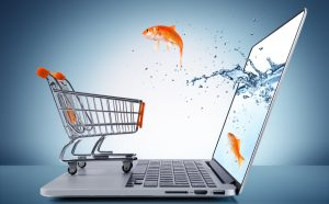goldfish in cart - e-commerce concept